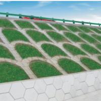 阳光雨 护坡透水砖 300×450×60