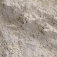 426白水泥