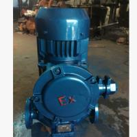 厂家直销:YG50-160立式防爆油泵,管道油泵,油泵