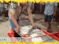 水泥花砖机 国内新闻 (238播放)
