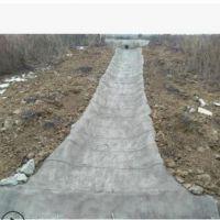 厂家直销混凝土新型建材水泥毯公路护堤鱼池防水施工简单不易开裂